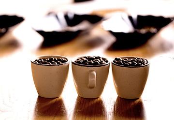 希少銘柄を、職人の焙煎と丁寧な手作業によってひとつのコーヒー銘柄へと仕上げていきます。