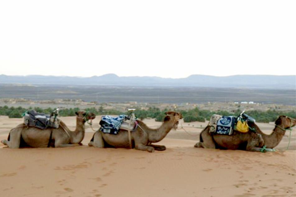旅の中のコーヒー(サハラ砂漠編)