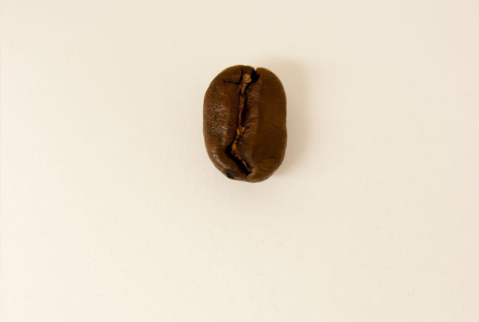 今のコーヒー豆のほうが品質が高い。