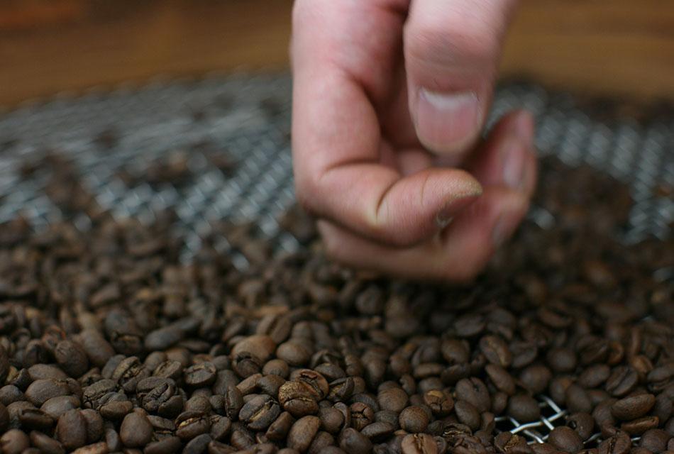 地道な作業が、美味しいコーヒーを作り出す。
