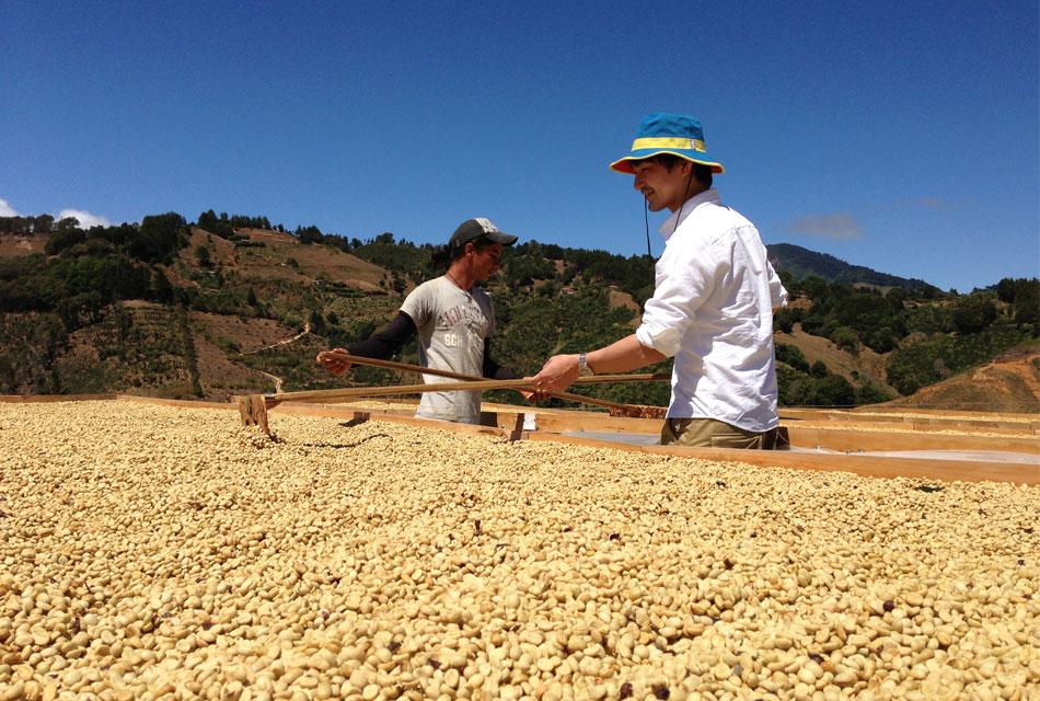 コーヒー農園で働きながら。