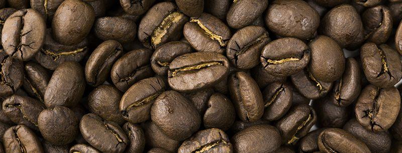 コーヒー豆・粉イメージ写真