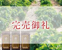 『新豆』の味わいを堪能する銘柄3点セット 本体価格 5400円 (税込5832円)